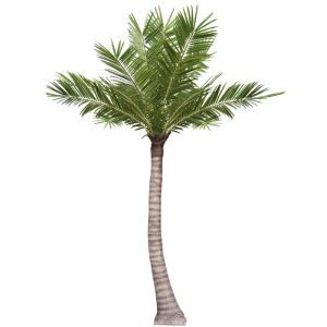 Artificial Evergreen Coconut Tree