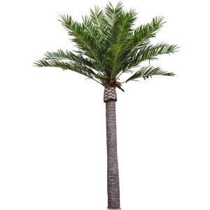 Outdoor Artificial Date Palm Tree